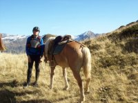 in compagnia del nostro cavallo