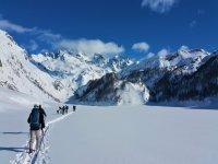 group skis