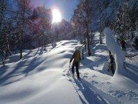 snowshoe ascent