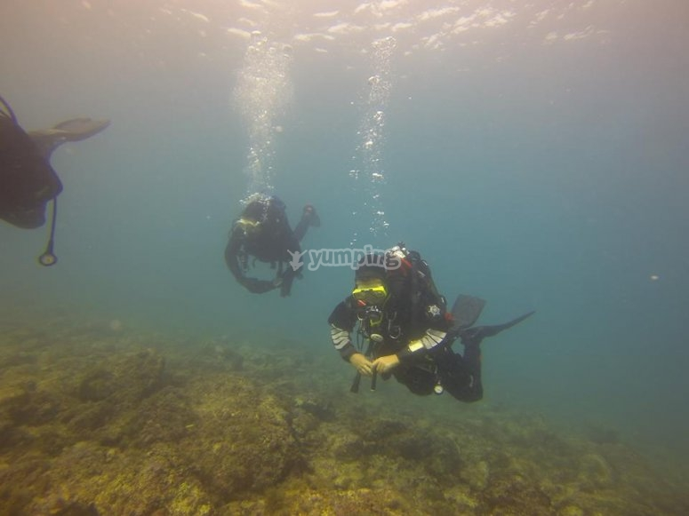 inspecting the seabed