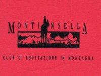 Montinsella