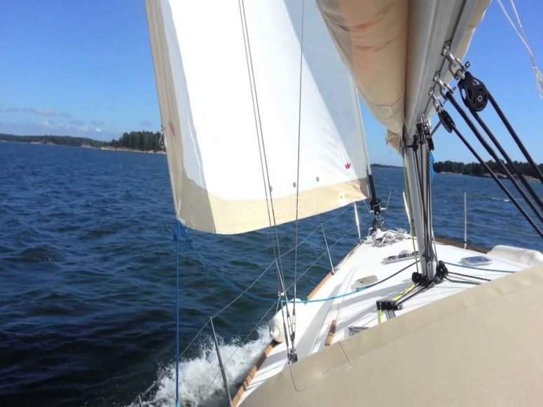 from the stern