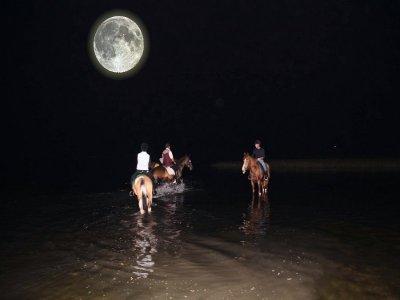 Passeggiata a cavallo a Volterra di notte 2h