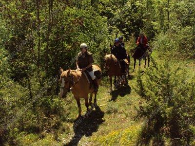 Week end a cavallo a Volterra