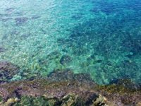 La trasparenza del mare siciliano.JPG