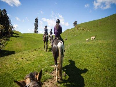 Notte in tenda + 2 escursioni a cavallo a Volterra
