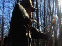 arciere nel bosco