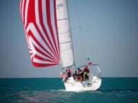 Escursione in barca con skipper a Ostia di 4 ore