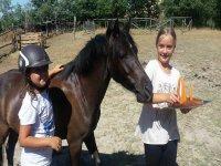 Con i pony