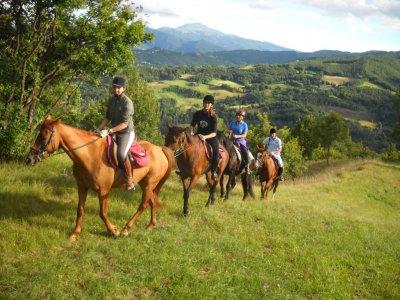 Passeggiata a cavallo a Uzzano di 2 ore