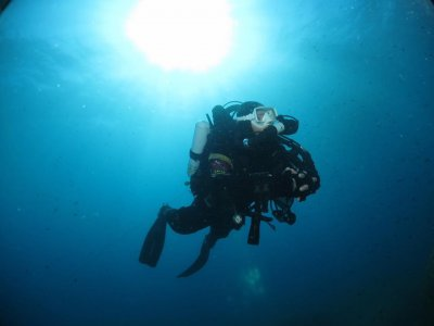 Complete diving course of 4 lessons on Elba
