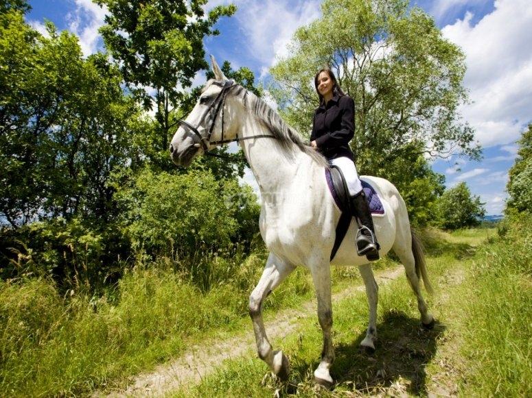 imparare a domare un cavallo