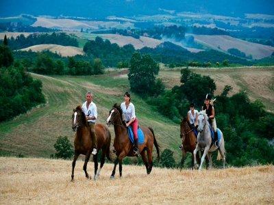 Una giornata a cavallo con pranzo a Uzzano