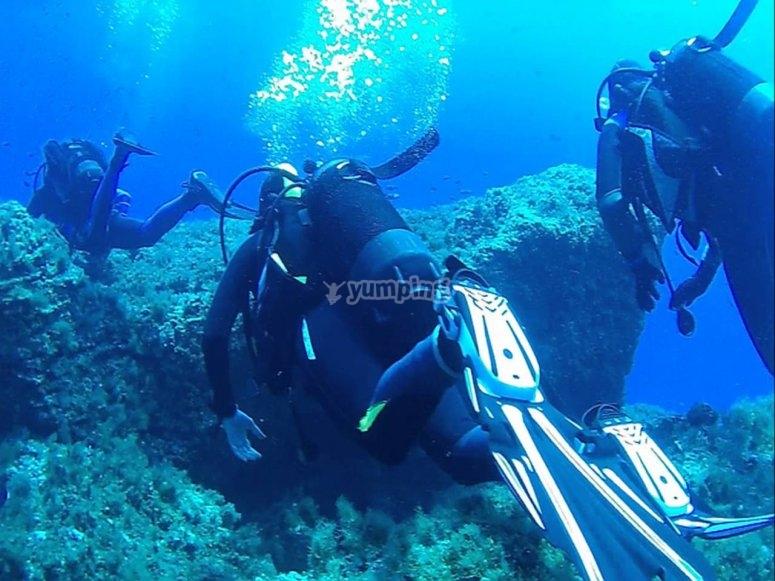 cosa scoprirai in fondo al mar