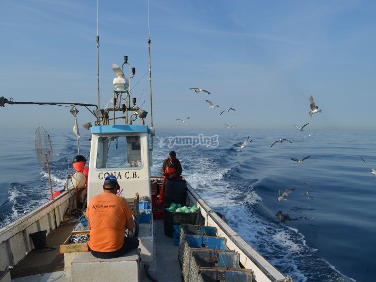 pesca al largo