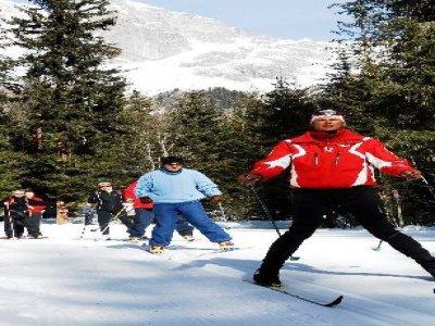 Scuola Sci Fondo & Biathlon Anterselva  Sci di Fondo