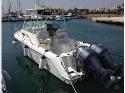 El Dorado  Noleggio Barche