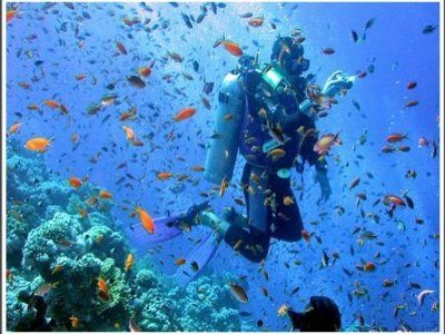 El Dorado  Diving