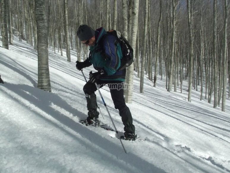 in the woods on snowshoes