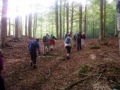 Escursione Nordic Walking+soggiorno, Monte Amiata