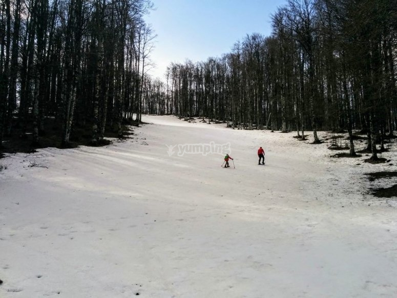 a snowshoe hike with us to relax body and soul