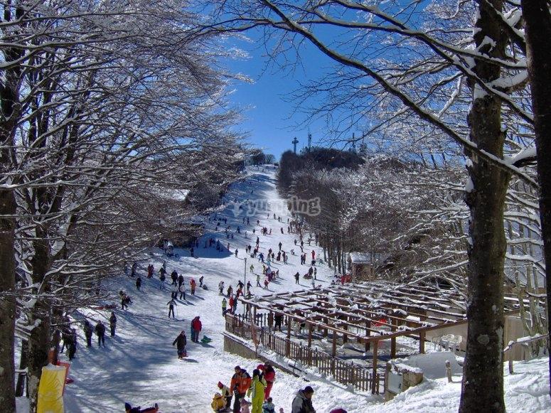 summit of Monte Amiata