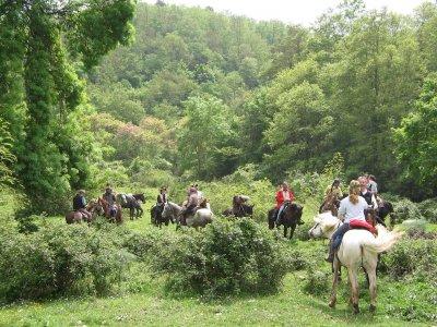 Trekking a cavallo sul Monte Amiata+soggiorno