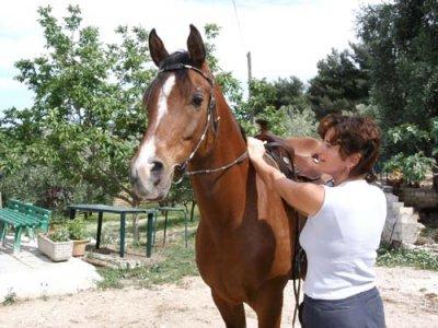 Azienda Agricola Gentile Passeggiate a Cavallo