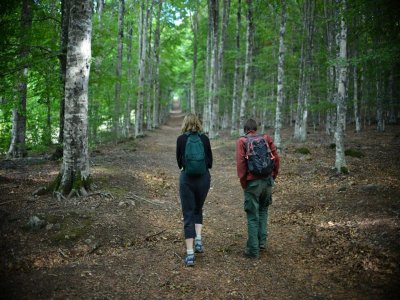 Trekking e Nordic Walking Monte Amiata (weekend)