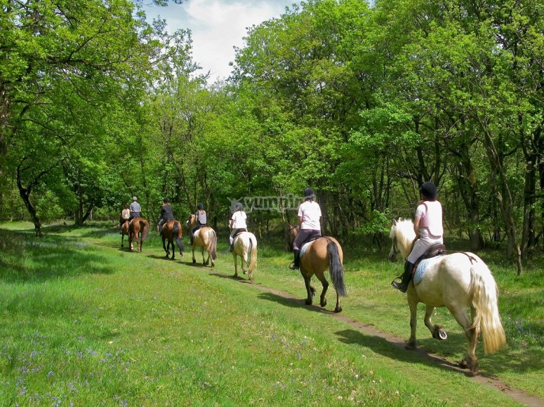 un avventura a cavallo