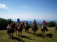 Passeggiata a cavallo Ostia Antica 1h per esperti