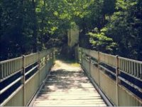 un ponte verso il verde