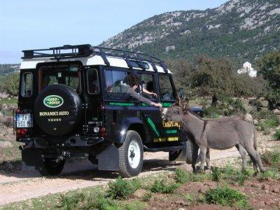 Dolmen Servizi al Turismo 4x4 Fuoristrada