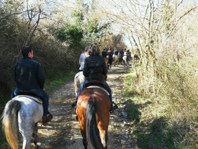 Passeggiata a cavallo a Bassano Romano (2h)