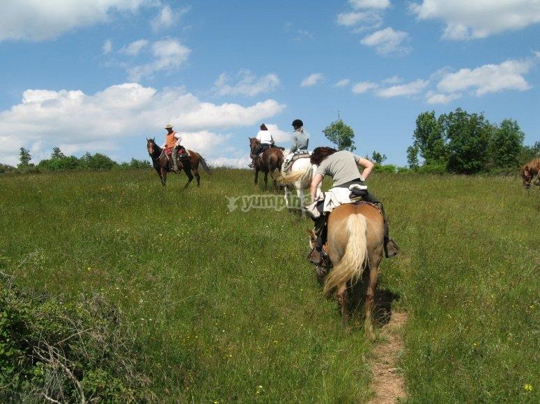 bellissime passeggiate a cavallo