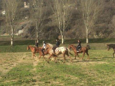 Passeggiata a cavallo giornata intera, Talamona