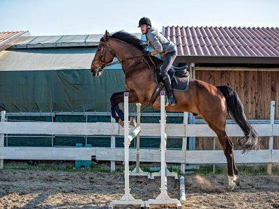 Lezione di equitazione a Grosseto di 1ora