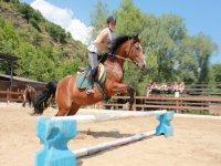 Le lezioni di equitazioni per adulti ti stanno aspettando