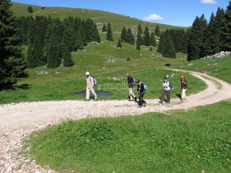 Passeggiare in Val di Fassa