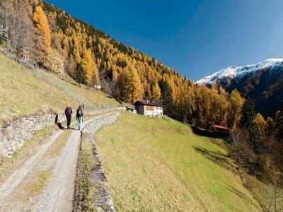 Adamello Ski Trekking