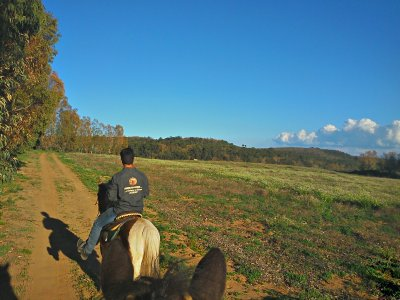 Passeggiata a cavallo a Enna di 1 ora e 30