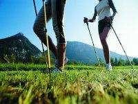 Nordic Walkingreen
