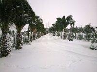 In sella con la neve