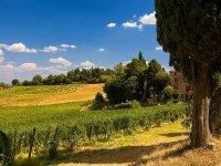 Splendidi Paesaggi Toscani