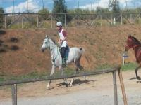 Passeggiata a cavallo ( 2 ore) , Follonica