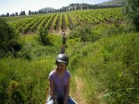 Horse trekking in Sant'Anastasia (2h)
