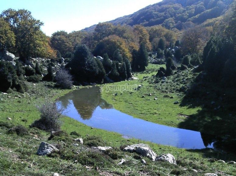 The gorgonero pond