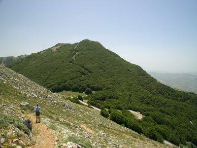 Excursion to Mount Mufara (3h)