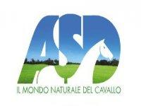 ASD Il Mondo Naturale del Cavallo