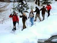 Snowshoeing in group